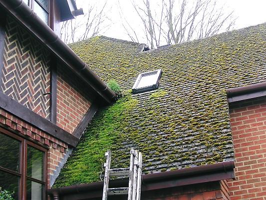 Avant et apres le nettoyage de la toiture demoussage et for Comment nettoyer un toit en ardoise