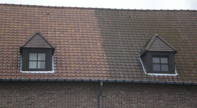 tiled roof cleaning before and after