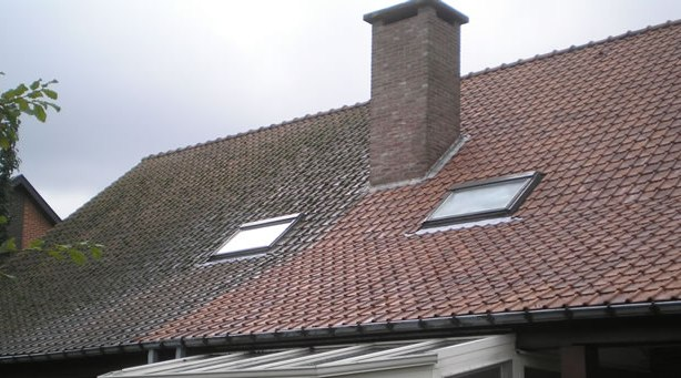 tiled roof de-mossing before and after