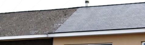 vor und nach der dachreinigung dach entmoosen und dach. Black Bedroom Furniture Sets. Home Design Ideas